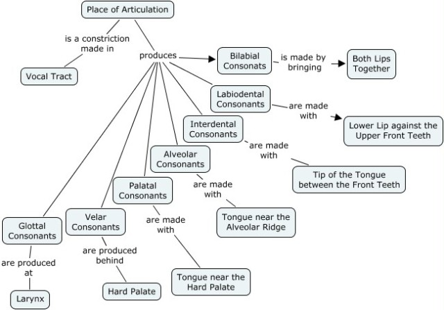 Articulation-image