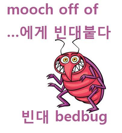 mooch = bedbug