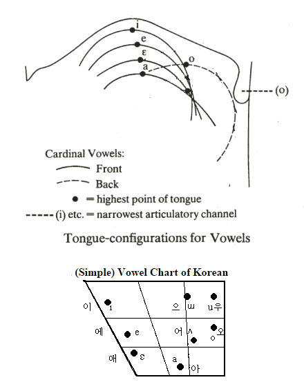 Phonology of the Korean ㄹ | Hanguk Babble
