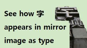 typemirrorimage